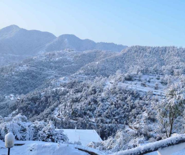 shimla-tour-packages-1