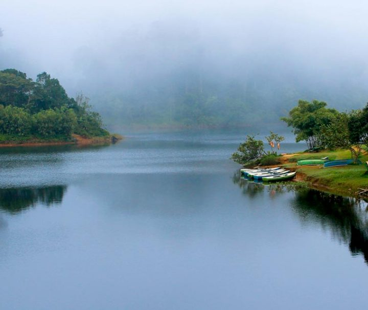 thekkady-tour-packages-2